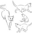 Cat in motion sketches vector image