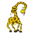 fanny cartoon giraffe character vector image