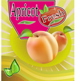 Fresh apricot juice Banner vector image vector image
