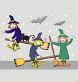 halloween witches vector image vector image