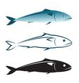 image an mackerel design vector image