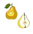 pear cut pear half pear vector image