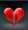 realistic icon of human red heart with zipper vector image vector image