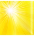 Abstract yellow brighy summer background vector image vector image