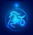 capricorn zodiac sign icons vector image vector image