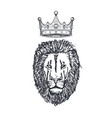 hand drawn lion head with crown lion face vector image vector image