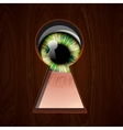 Interested Eye looking in keyhole vector image