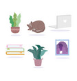 potted plants cat books picture and laptop icons vector image vector image