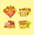 promotional labels with maple leaves oak foliage vector image vector image