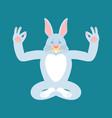 rabbit yoga hare yogi isolated animal relaxation vector image