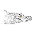 crocodile head vector image