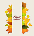 Autumn leaves on a light background vector image