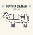 butcher diagram and scheme - beefcow vector image