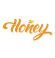 hand drawn lettering honey elegant modern vector image
