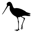Sandpiper Birds Silhouettes vector image vector image