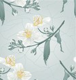 Seamless texture twig jasmine flower vector image vector image