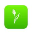 tulip icon green vector image vector image