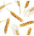 wheat and rye ears seamless pattern vector image vector image