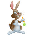 bunny rabbit and carrot vector image vector image
