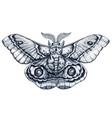 butterfly tattoo art madagascar bullseye moth vector image