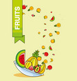fresh healthy set of fruits vector image vector image
