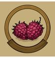 Label for raspberries jam sketch style vector image