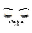 lashes and brows vector image vector image