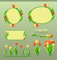 spring tulips frames set vector image