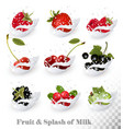 Big collection of fruit and berries in a milk vector image vector image