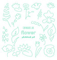 continuous line flower drawing set vector image vector image