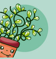 cute houseplant kawaii cartoon vector image