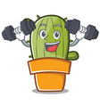 fitness cute cactus character cartoon vector image vector image