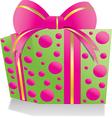 giftbox pinkgreen vector image vector image