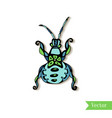 hand drawn creativity beetle insect ethnic style vector image