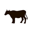 silhouette of cow different poses black vector image