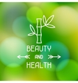Spa beauty and health label on blurred background vector image vector image