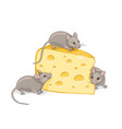 three grey mice with a piece cheese vector image vector image