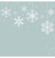 Snowflakes Christmas decorations vector image