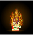 burning colored books with fire flame vector image vector image