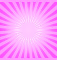 pink radial background vector image vector image