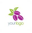 plum fruit organic logo vector image