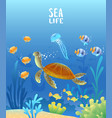 sea world turtle vector image