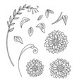 line art set sunflower flowers vector image