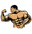 muscle bodybuilder posing vector image vector image
