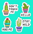 set of isolated stickers with cactus vector image