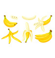 yellow bananas isolated on a white background vector image vector image