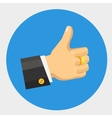 thumb up flat color icon vector image