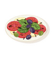 caprese salad on plate isolated on white vector image