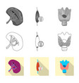 design body and human logo collection vector image vector image