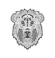 entangle stylized lion head vector image vector image
